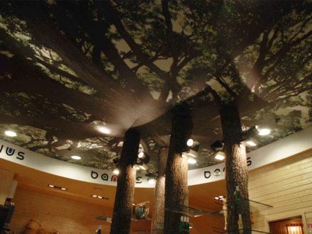 Деревянные бревна продолжают уникальный потолок, выполненный под лесное небо