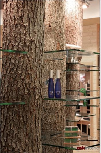 Стеклянные полки, встроенные в бревна, превращают изделия в лесные сокровища